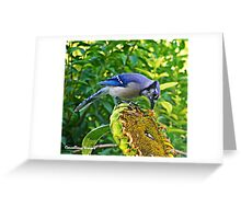 Blue Jack Greeting Card