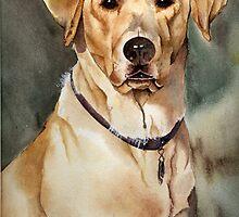 """Dove"" the Labrador Retriever by David T. Mitchell"
