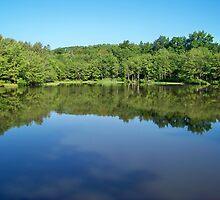 The Delaware Water Gap by Dandelion Dilluvio