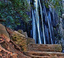 Nojoqui Falls by Renee D. Miranda