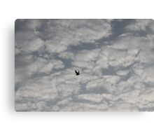 high above the sky Canvas Print