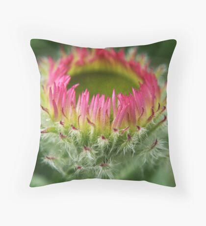 Aster Alpinus Rockery plant Throw Pillow