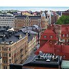 Roofs of Helsinki by silpol