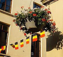 Brussels, Belgium - Flowers, Flags, Football by Georgia Mizuleva