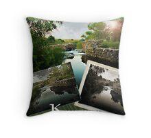 Kumeyaay Composite Throw Pillow