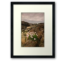 Sanna Bay, Ardnamurchan, Highland, Scotland Framed Print