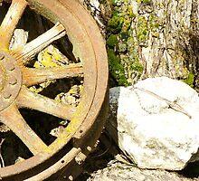 Old wheel 2 by picturgrl