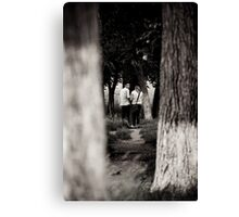 OnePhotoPerDay Series: 153 by L. Canvas Print