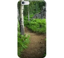A Tranquil Path iPhone Case/Skin