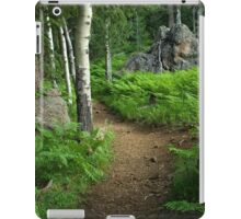 A Tranquil Path iPad Case/Skin