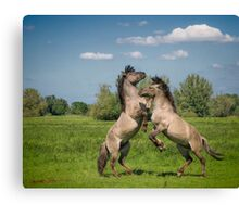 It takes two to tango Canvas Print