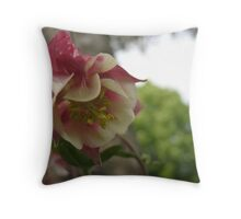 Sly Columbine Throw Pillow