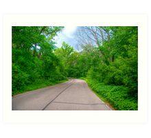 Arboretum Drive Art Print