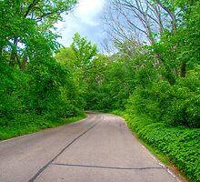 Arboretum Drive by ECH52