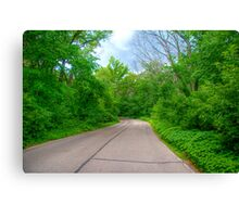 Arboretum Drive Canvas Print