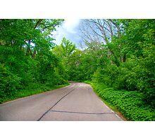 Arboretum Drive Photographic Print