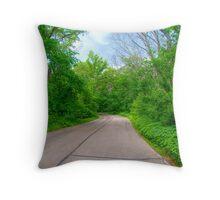 Arboretum Drive Throw Pillow
