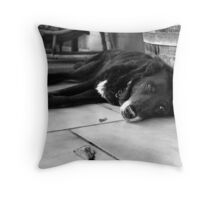 A Life Well Lived Throw Pillow
