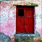 Red Door, the Rain, the Old Wall by paintingsheep