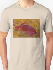 The Warm Glow of Fall - a Horizontal View T-Shirt