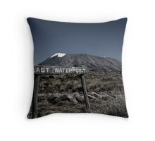Last waterpoint Throw Pillow