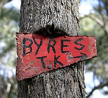 The Sign - Byres Track, Lerderderg State Park VIC, Australia by baskstudio