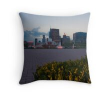 Buckingham Fountain with painted in light Throw Pillow