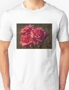 From My Mother's Garden - Three Fabulous Old Fashioned Sweetheart Roses T-Shirt