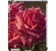 From My Mother's Garden - Three Fabulous Old Fashioned Sweetheart Roses iPad Case/Skin