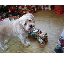 She's Just Another Kid on Christmas Morning Photographic Print