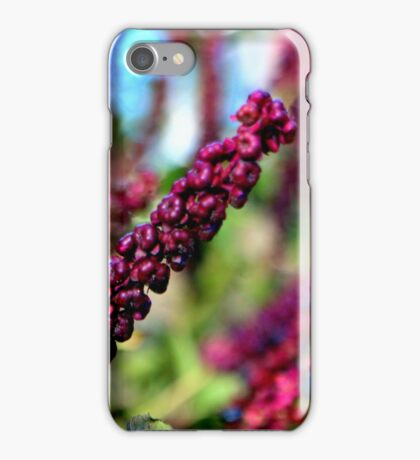 Going Going Gone To Seed iPhone Case/Skin