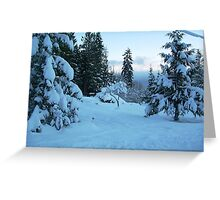 A Beautiful Snow Covered Morning in Vancouver Is. Greeting Card