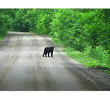 Unusual Roadblock Photographic Print