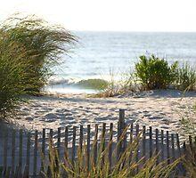 In the dunes by Éilis  Finnerty Warren