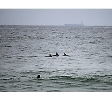 Surfing Dolphins @ Newcastle Photographic Print