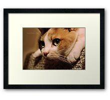 Meet Me On The Other Side. Framed Print