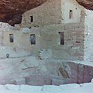 Spruce Tree House,Mesa Verde, Colorado, USA (Y) by Adrian Paul