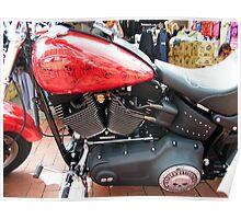 Stunning Harley Poster