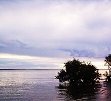 Calm sea - Hervey Bay, QLD by pooka92