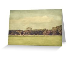 Polo Practice #10 Greeting Card