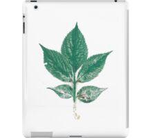 Print iPad Case/Skin