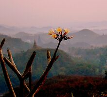 Mrauk Oo at dawn by Brian Bo Mei
