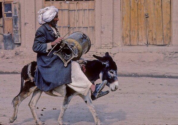 Is a precious donkey rides(2) 、AFGHANISTAN by yoshiaki nagashima