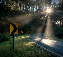 Hazy Rays by Alistair Wilson