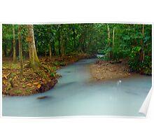 Magical Mayan Jungle River Poster