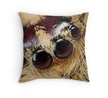 jumping spider 5X Throw Pillow