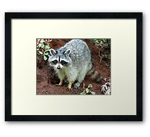 CAN YOU DIG IT? Framed Print