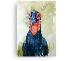 Who U Lookin At Canvas Print