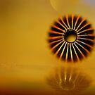 The Venerable Bead by duncandragon