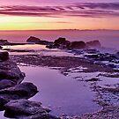 """Purple Morn"" by Phil Thomson IPA"